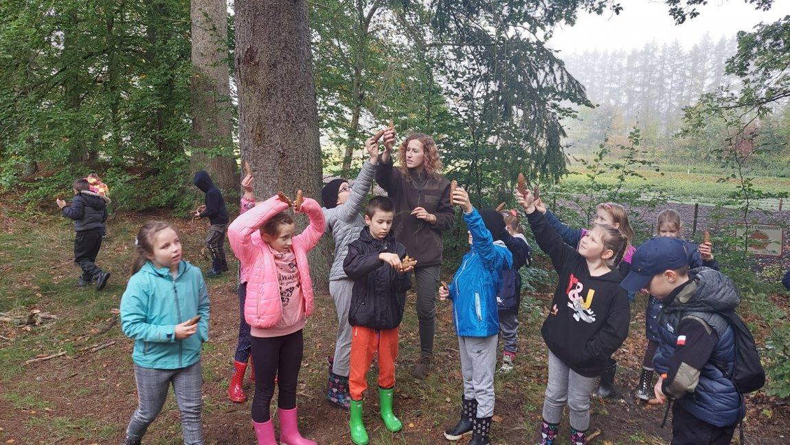 Zdjęcie przedstawia uczniów z klasy 3c oraz panią leśnik trzymających w ręku szyszki